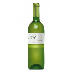 L'Eclat Blanc 2019 AOP Côtes de Gascogne